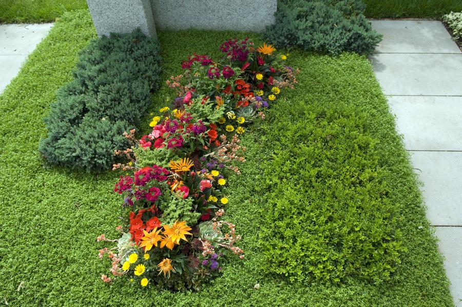 Jakie Kwiaty Sadzic Na Cmentarzu Nasz Glos Poznanski